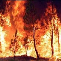 112: il numero unico delle emergenze in tilt per colpa degli incendi