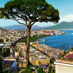 Napoli-PinoVesuvio